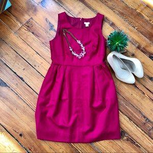 Gorgeous JCREW NWT Fuchsia Dress